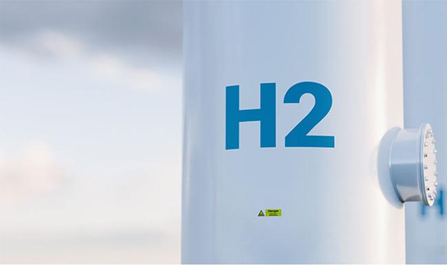 Argentina se reconoce como un país con gran potencial, para renovables, como para hidrógeno. Foto: ECONO JOURNAL.